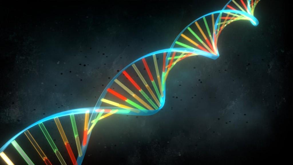 genetica-de-dios